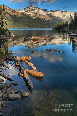 Photograph - Garibaldi Lake Portrait by Adam Jewell