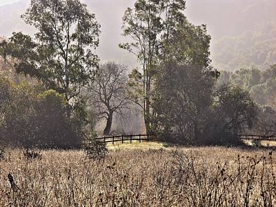Photograph - Garland Ranch In The Carmel Valley by Elery Oxford