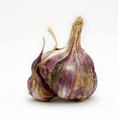 Garlic Glove Art Print by Bernard Jaubert