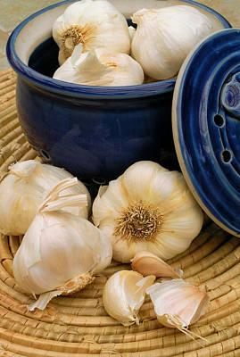 Garlic Art Print by James Temple
