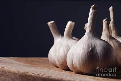 Photograph - Garlic by Jelena Jovanovic
