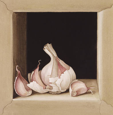 Onion Wall Art - Painting - Garlic by Jenny Barron