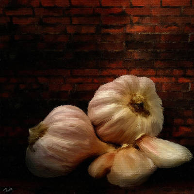 Garlic Art Print by Lourry Legarde