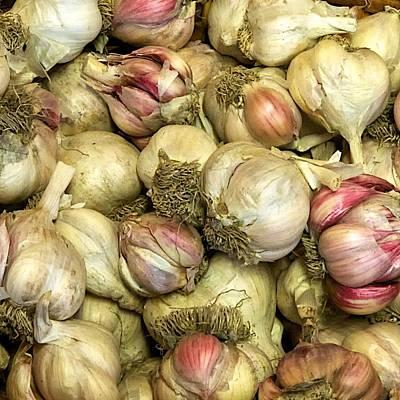Garlic Art Print by Tom Giske