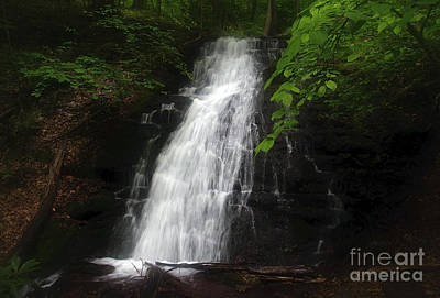 Print featuring the photograph Garvey Spring Falls by Debra Fedchin