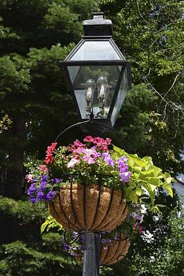 Gas Lamp Photograph - Gas Light Flowers by William Hallett