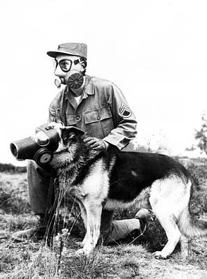 German Shephard Photograph - Gas Masks On Dog And Military Personal by Retro Images Archive