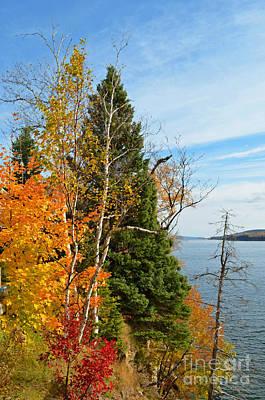 Digital Art - Gaspe Canada Autumn Colors by Eva Kaufman