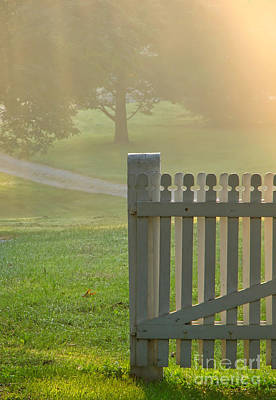 Gate In Morning Fog Art Print by Olivier Le Queinec
