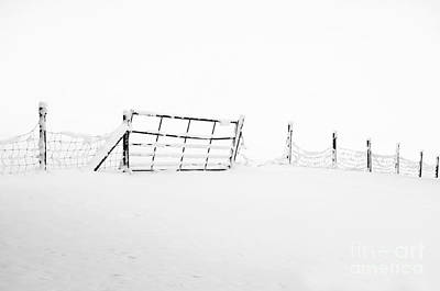 Gate In Snow Art Print by Anne Gilbert