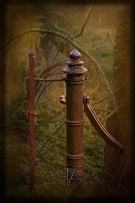 Rich Brown Frame Photograph - Gate Post by Liz  Alderdice