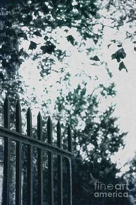 Black Metal Fence Photograph - Gated by Margie Hurwich