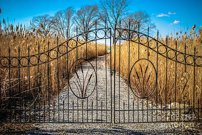 Photograph - Gated Pathway by Grace Grogan