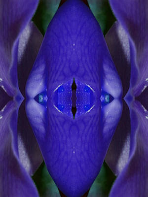 Etheric Digital Art - Gatekeeper Of The Sacred Chamber by Marie-Louise Svensson