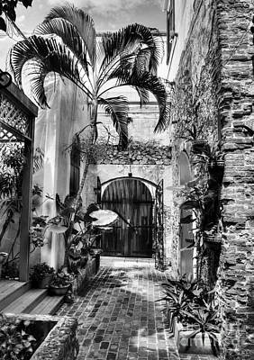 Gates Of St Thomas 1 Bw Print by Mel Steinhauer