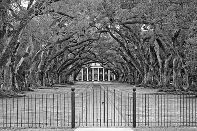 Gateway To The Old South Monochrome Art Print