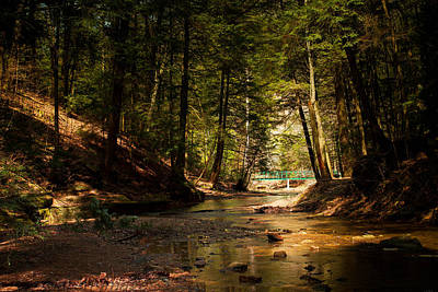 Art Print featuring the photograph Gathering At The Stream by Haren Images- Kriss Haren