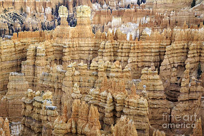 Photograph - Gathering Of Hoodoos by Stuart Gordon