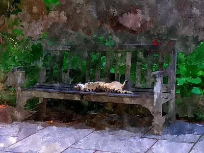 Doze Digital Art - Gato Dorme by Duende Artworks