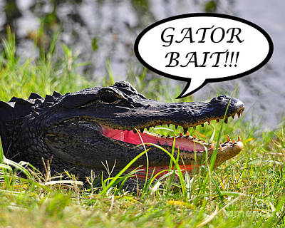 Alligator Digital Art - Gator Bait Greeting Card by Al Powell Photography USA