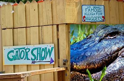 Photograph - Gator Show by Bob Pardue