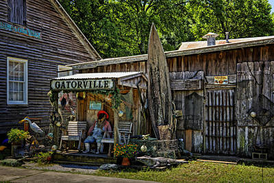 Photograph - Gatorville La Dsc04213 by Greg Kluempers