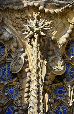 Photograph - Gaudi's Inspiration by Jack Daulton