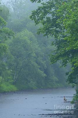Gauley River Summer Rain Art Print by Thomas R Fletcher