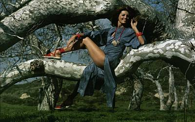 Gayle Hunnicutt In A Tree Art Print
