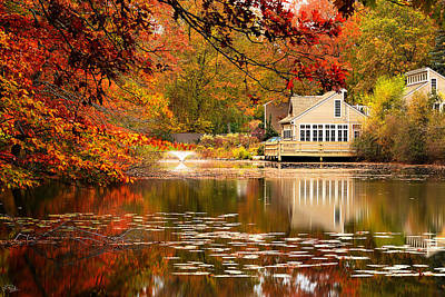 Autumn In New England Photograph - Gaze In Wonder by Lourry Legarde