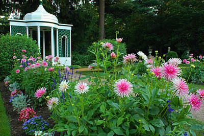 Photograph - Gazebo Bloom by Michael Hubley