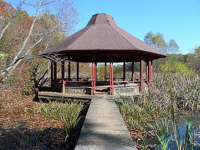 Photograph - Gazebo by Philomena Zito