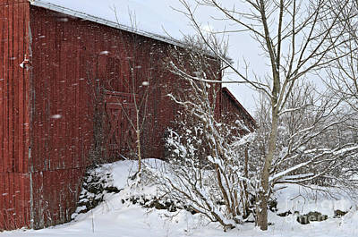 Red Barn In Winter Photograph - Geauga County Ohio Winter by Lila Fisher-Wenzel