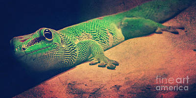 Gecko Digital Art - Gecko by Angela Doelling AD DESIGN Photo and PhotoArt