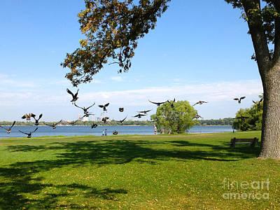Photograph - Geese In Flight by Heidi Hermes