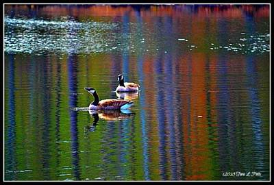 Art Print featuring the photograph Geese On The Lake by Tara Potts