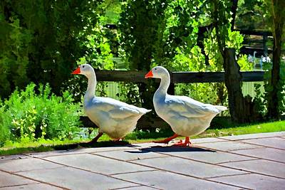 Print featuring the photograph Geese Strolling In The Garden by Tracie Kaska