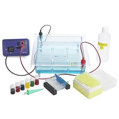 Gel Electrophoresis Equipment Art Print by Science Photo Library