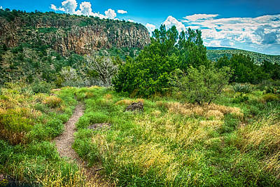Photograph - General Crook Trail In The Arizona Mountains by Bob and Nadine Johnston