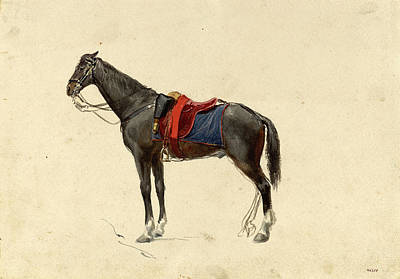 Mariano Fortuny Drawing - General Prim's Mare by Maria Fortuny