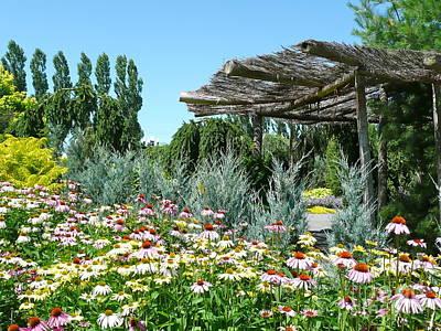 Photograph - Generous Garden Landscape by Rachel Gagne