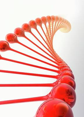 Life New Beginnings Photograph - Genetic Engineering by Victor Habbick Visions