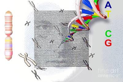 Genetic Fingerprints, Conceptual Artwork Art Print
