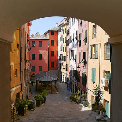 Photograph - Genoa Arch Community by Herb Paynter