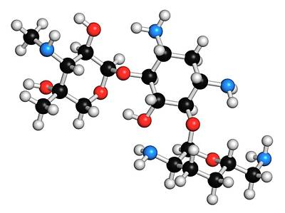 Gentamicin Antibiotic Molecule Art Print by Molekuul