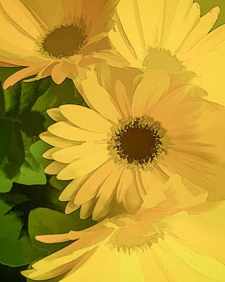Photograph - Gentle Daisies  by Mary Underwood