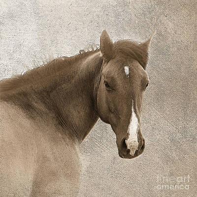 Western Art Digital Art - Gentle Devotion by Betty LaRue