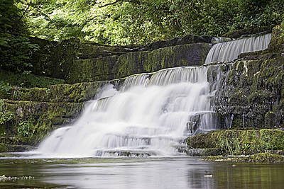 Photograph - Gentle Falls by Tony Reddington