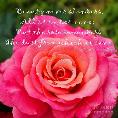 Gentle Rose Always Remembers - Rose - Quote Art Print