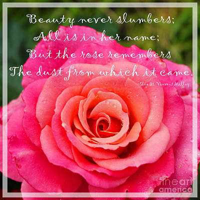 Gentle Rose - Beauty - Florist - Gardener Art Print